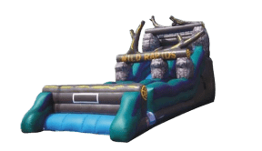 Nashville Inflatable slide rentals