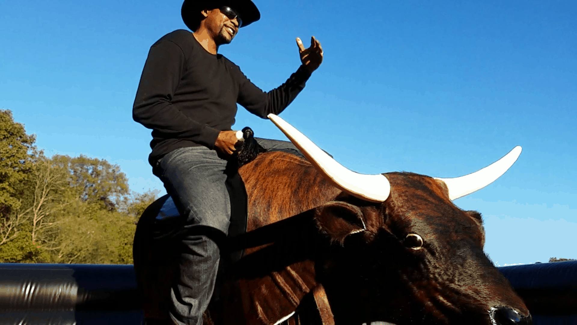 Mechanical Bull Rentals